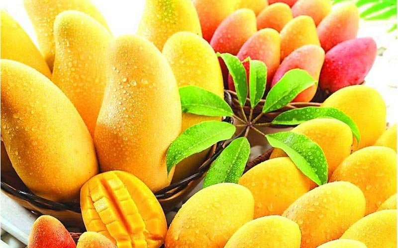 Five (5) Health Benefits Of Mangoes
