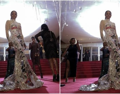 All The Times Nana Akua Addo Slayed Red Carpets In 2017