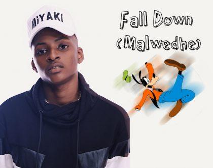 Miyaki – Fall Down (Malwedhe English Version) (Prod by BpmBoss)