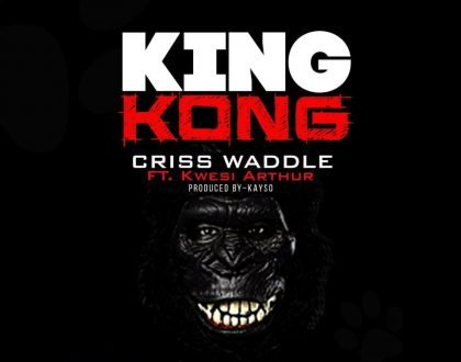 """Criss Waddle Drops New Song """"King Kong"""" Feat. Kwesi Arthur(VIDEO)"""