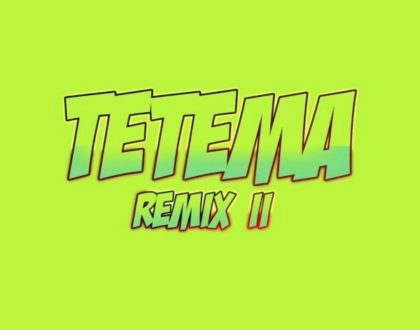 Rayvanny – Tetema (Remix) II ft. Patoranking, Zlatan & Diamond Platnumz