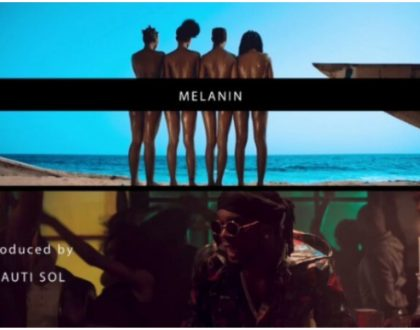 Ladies expose too much skin in Sauti Sol's new song 'Melanin' featuring Patoranking
