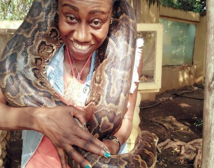 Papa Shirandula's wife photographed carrying a huge snake, leaves fans talking!