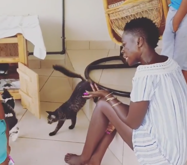 Sick Akothee uses her cats to give example on how you should treat anyone whoterrorizes you