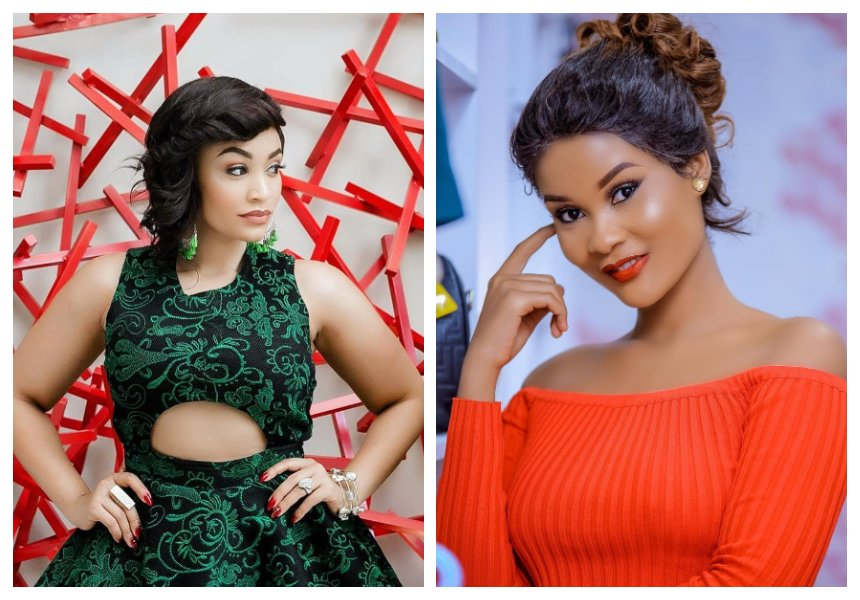 Zari Hassan speaks on allegation that Hamisa Mobetto is once again pregnant with Diamond's baby