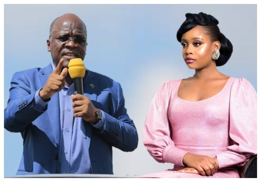 Diamond's ex Jokate Mwegelo opens up about her struggles after President Magufuli appoints herDistrict Commissioner