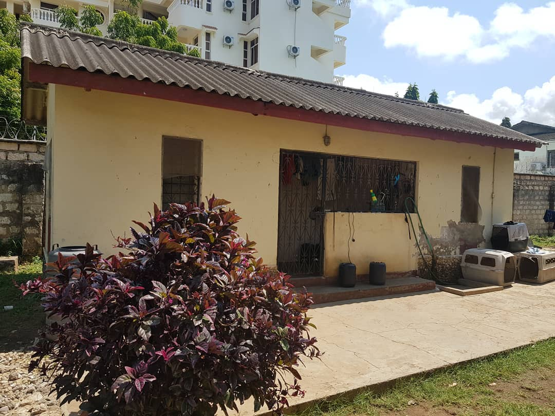 The first house Akothee rented