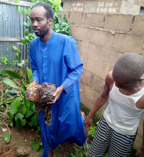 Prophet Olusola Akindele carried the woman's head. Prophet Ayodele Bamiduro (left) his accomplice helped him bury the woman's head and hands at the church premise