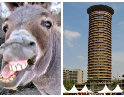 Hilarious reactions after architect reveals he was inspired by the shape of a donkey's penis to come up with the design of KICC