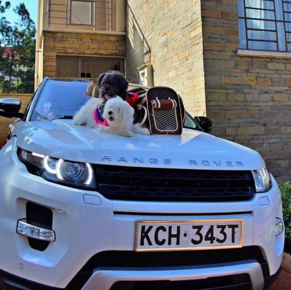 Vera Sidika's Range Rover