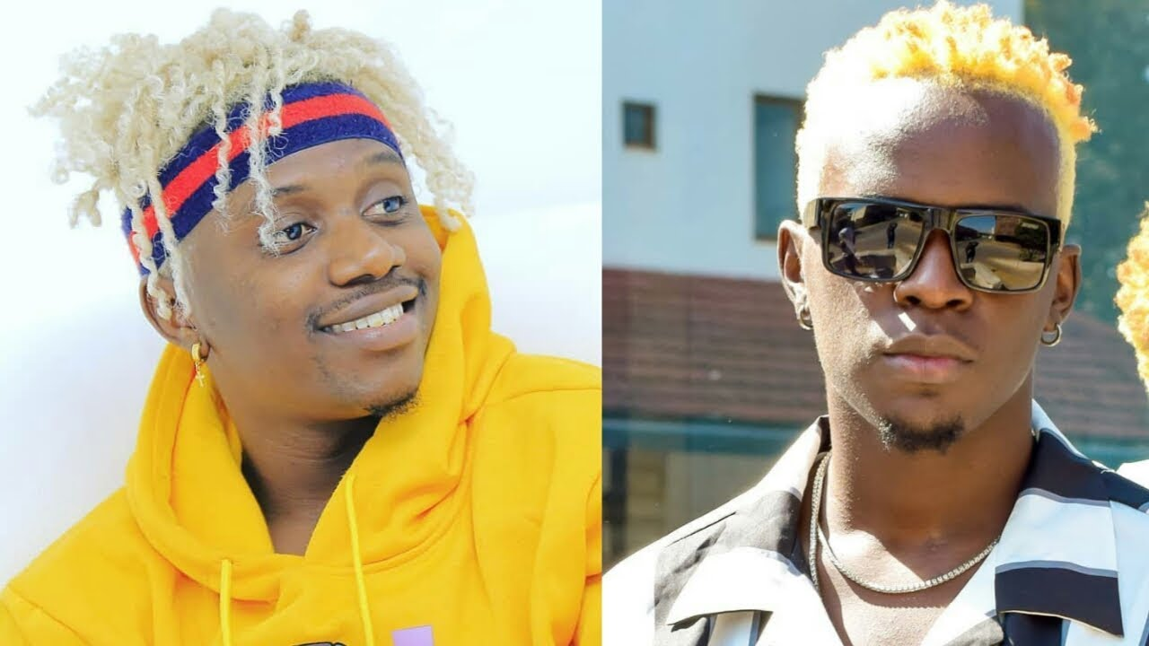 Willy Paul and Rayvanny back to the battle ground? It´s now an online war of words between them