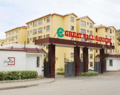 The pollution will kill us! Why Greatwall Apartments are in the headlines yet again after Ruth Matete's case