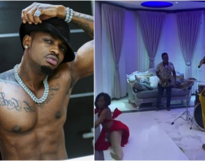 Diamond Platnumz extravagant house tour that has taken Africa by storm