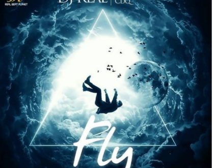 DJ Real – Fly ft. Ice Prince & CDQ