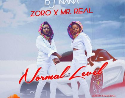 DJ Nana – Normal Level ft. Mr. Real & Zoro