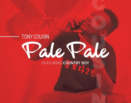 Tony Cousin - Pale Pale Ft. Country Boy