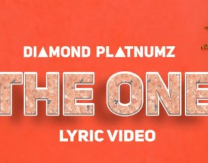 Video Lyrics: Diamond Platnumz – The One