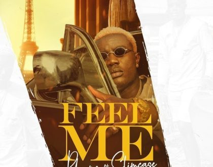 DOWNLOAD MP3 : PABRYMO FT. SLIMCASE – FEEL ME