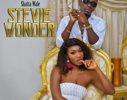 Wendy Shay Ft. Shatta Wale -Stevie Wonder (Official Video + Audio)