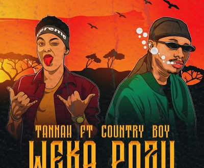 Tannah Ft Country Boy - Weka Pozi
