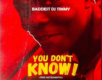 Baddest DJ Timmy – You Don't Know (Free Instrumental)
