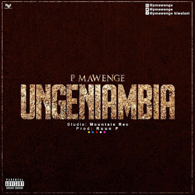P Mawenge (P The Mc) - Ungeniambia
