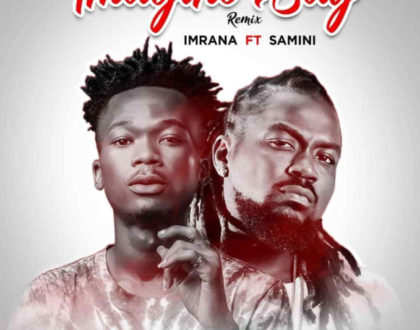 Imrana ft. Samini - Imagine Say Rmx [Prod By Daremamebeat]