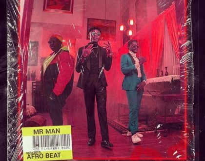 Kani Beatz – Mr Man ft. Teni & Joeboy