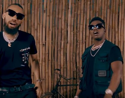 Rayvanny Ft Phyno - Slow
