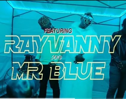 Nyandu Tozzy Ft Rayvanny & Mr Blue - Mawe