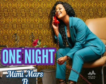 MIMI MARS FT KAGWE MUNGAI – ONE NIGHT