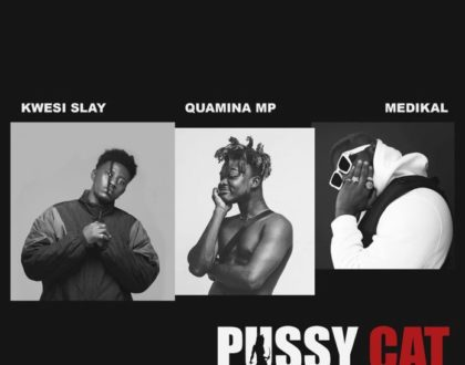 Kwesi Slay ft. Medikal & Quamina Mp – Pussy Cat (Prod. by Lyriqal Beatz)