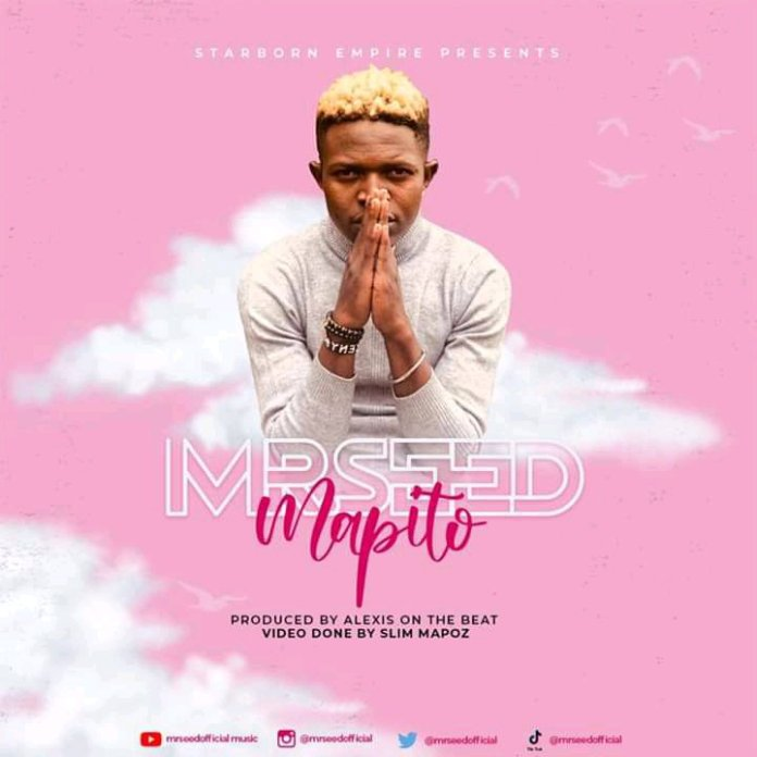 MR.SEED – MAPITO