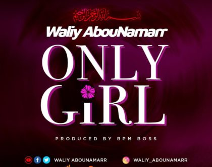 Waliy AbouNamarr - Only Girl (Prod by BPM BOSS)