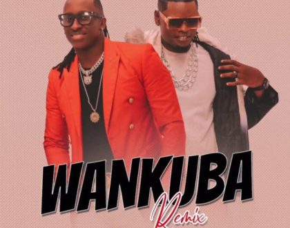 Bruno K ft Pallaso – WANKUBA Remix