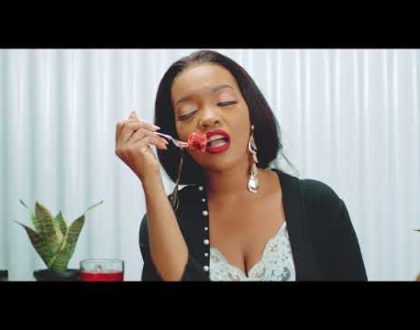 Seline – Show Time