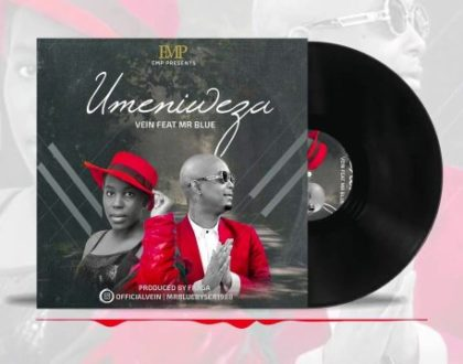 Vein ft Mr Blue – Umeniweza