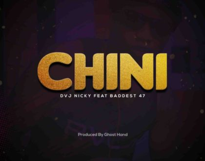 Dvj Nicky Ft. Baddest 47 – Chini