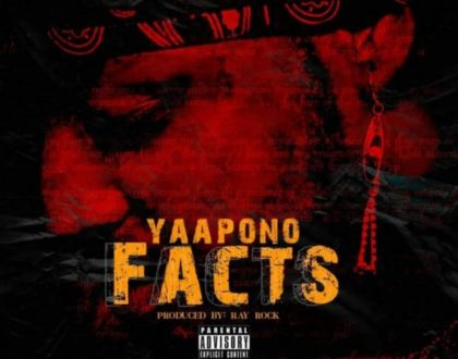 Yaa Pono – Facts (Shatta Wale Diss) (Prod. by Ray Rock)