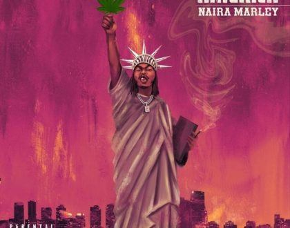 Naira Marley – First Time In America