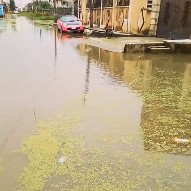 Cossy  Orjiakor says her vote is for sale to anyone who can fix her flooded street