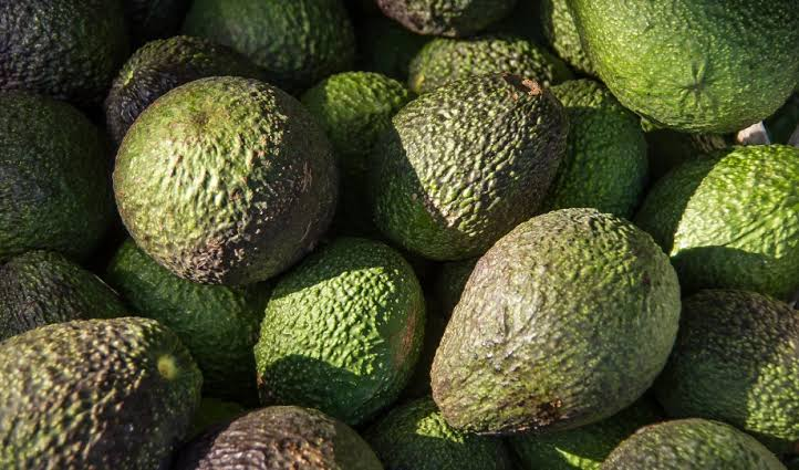 The Avocado Guy: How a fruit incident in high school gave birth to a lifetime nickname!