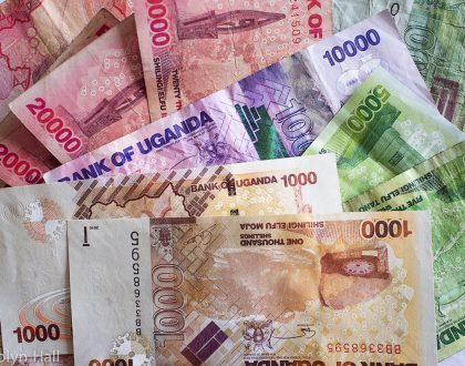 UTI Causing Bacteria Found on Uganda Currency Notes