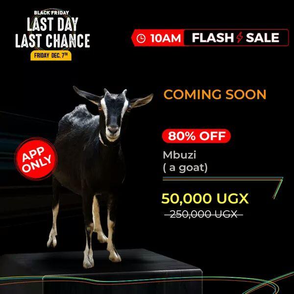 Jumia Uganda To Sell Mbuzi and Nkoko on Discount This Friday
