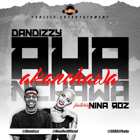 "VIDEO: Nigeria's Dandizzy features Nina roz on ""Akanchawa"""
