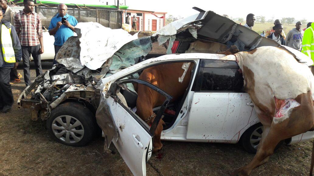Current Events Car Accidents