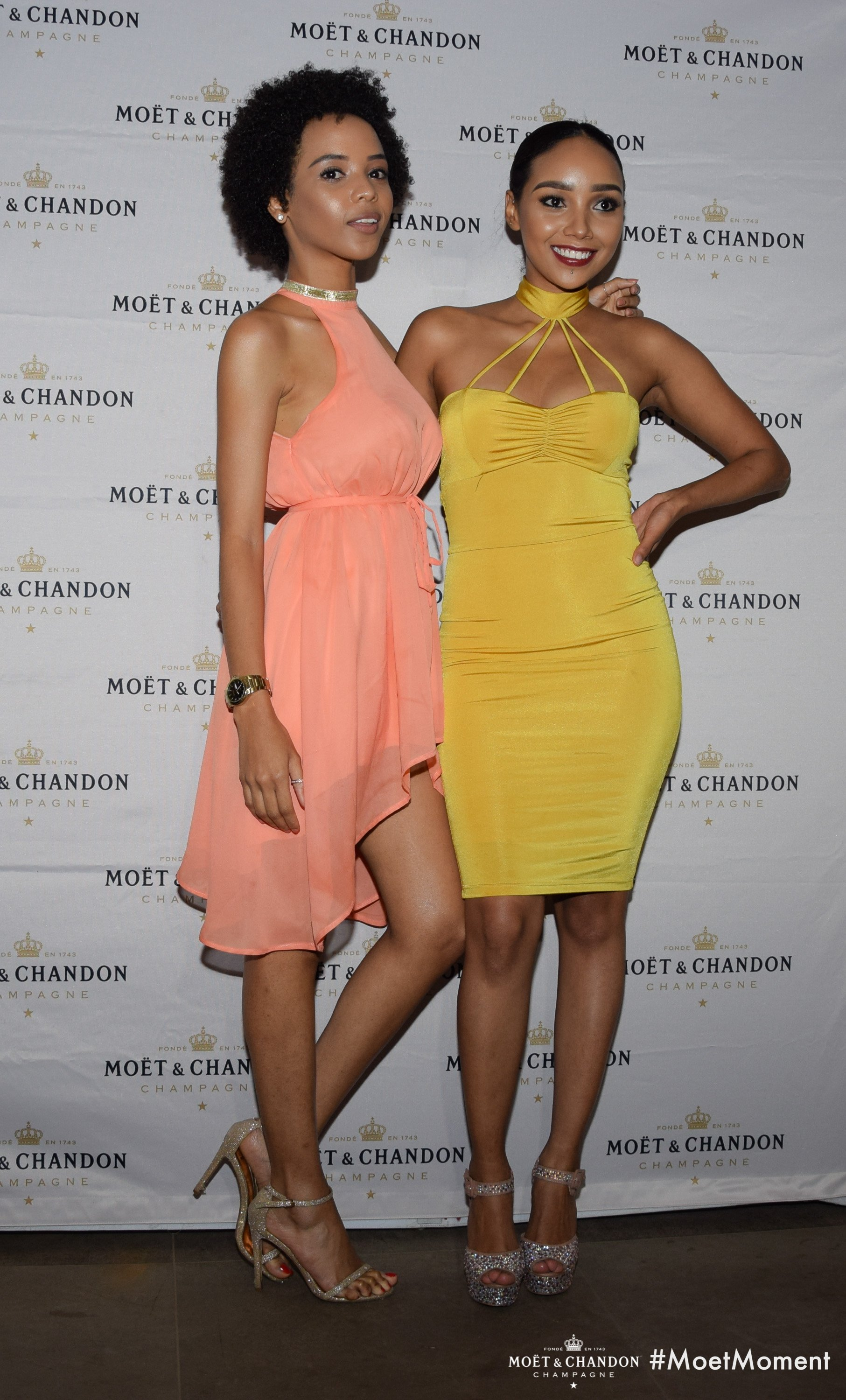 This is how the Moet & Chandon Luxury Dinner went down last night at Sankara; yes, Kenyan female celebrities were dressed to kill(PHOTOS)