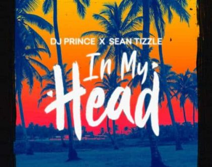 DJ Prince - In My Head ft. Sean Tizzle